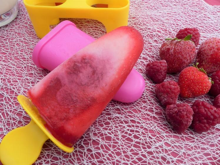 batonnet glacé aux fruits